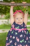 Girle que pendura em uma filial de árvore. Fotografia de Stock Royalty Free
