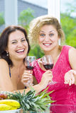 Girlfriend. Portrait of young happy attractive people having some wine Royalty Free Stock Photo