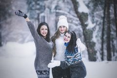 Girlfriend beautiful young women dressed warmly in winter Park royalty free stock images