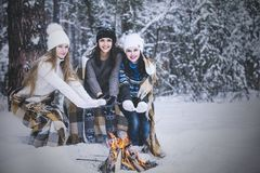 Girlfriend beautiful young women dressed warmly in winter Park stock image
