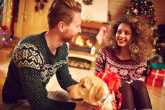 Girlfriend with boyfriend and dog as Christmas gift. Girlfriend with nice dog as Christmas gift from boyfriend at home stock photography