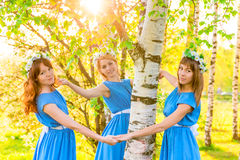 Girlfriend standing around the trunk of a birch Royalty Free Stock Photo