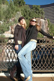 Girlfriends royalty free stock photo