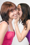 Girlfriends Royalty Free Stock Photography