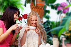 Girlfriends with coffee in garden Royalty Free Stock Photo