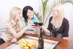 Girlfriends drinking wine and having fun stock photography