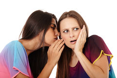 Girlfriends gossiping Royalty Free Stock Image