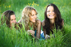 Girlfriends on grass Stock Photography