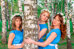 Girlfriends look out from of the trunk of a birch Stock Photo