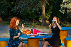 Girlfriends in the park blow bubbles. Stock Images