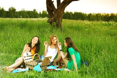 Girlfriends on picnic Stock Photos