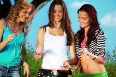 Girlfriends on picnic Stock Image
