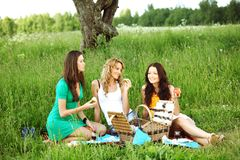 Girlfriends on picnic Royalty Free Stock Photo