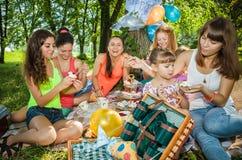 Girlfriends on picnic Stock Photos