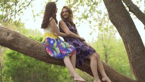 Girlfriends are sitting on a tree branch and chatting. Two attractive girls in bright dresses in a summer park. Attractive girl walking through the Park and stock video