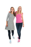 Girlfriends. Standing in de studio isolated over white background stock image