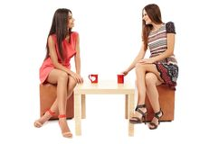 Girlfriends talking over a cup of tea. Portrait of girlfriends gossiping and talking over a cup of tea isolated on white Stock Photography