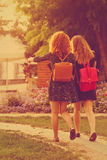 Girlfriends walk through the park. Royalty Free Stock Photo