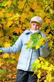 Girlie & autumn. Girlie & yellow park, autumn 2009 royalty free stock photo