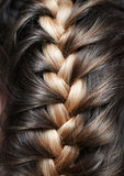 Girlish braid Royalty Free Stock Photography