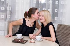 Girls. Two girls are drunk by coffees and whisper each other secrets Stock Images