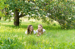 Girls in an apple orchard Royalty Free Stock Image