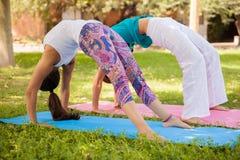 Girls arching their backs Stock Photos
