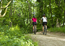 Girls from backside biking in the forest. Two girls from backside riding the bicycle in the forest Royalty Free Stock Images