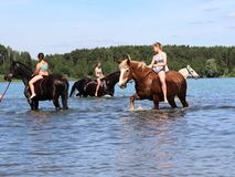 Girls bathe horse in the lake. Stock Image