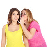 Girls. Beautiful young girl telling news to her friend stock photos