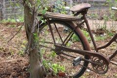 Girls Bike Royalty Free Stock Image