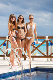 Girls in bikini relax on the background of the ocean. Three young girls with beautiful figure, two girls in black - one in a white bikini, sunglasses, wearing a royalty free stock photography