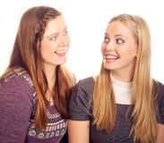 Girls  blonde and redhaired have fun Royalty Free Stock Photos