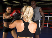 Girls Boxing Royalty Free Stock Images