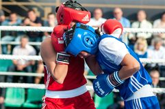 Girls in boxing competition Stock Photos