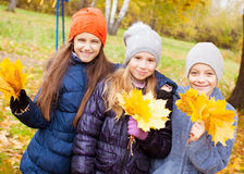 Girls and boy at autumn Royalty Free Stock Image