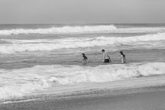 Girls Boy Swim Ocean Beach Black White Landscape Royalty Free Stock Photo