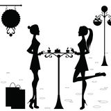 Girls in the Cafe after Shopping. Two girls are in the cafe after shopping Stock Image
