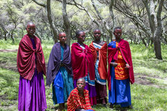 Girls in ceremonial dress, Maasi Village, Ngorongoro Conservatio Royalty Free Stock Image