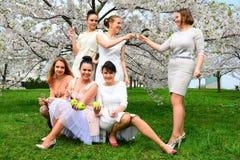 Girls with champagne celebrating in sakura's garden. Royalty Free Stock Photos