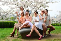 Girls with champagne celebrating in sakura's garden. Stock Photos