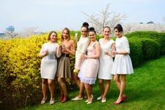 Girls with champagne celebrating in sakura's garden. Royalty Free Stock Images