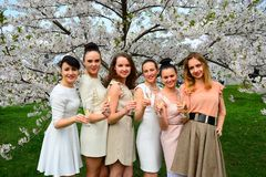 Girls with champagne celebrating in sakura's garden. Royalty Free Stock Image