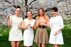 Girls with champagne celebrating in sakura's garden. Stock Images