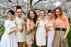 Girls with champagne celebrating in sakura's garden. Girls with glass of champagne celebrating in Vilnius sakura's garden Stock Images