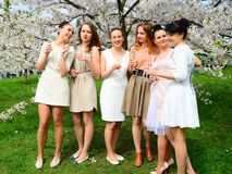 Girls with champagne celebrating in sakura`s garden. Royalty Free Stock Image