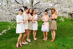 Girls with champagne celebrating in sakura& x27;s garden. Royalty Free Stock Images