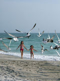 Girls chasing birds on the beach Royalty Free Stock Image