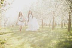 Girls in cherry blossom Stock Image