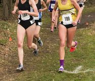 Girls cross contry running race. High school girls competing in a cross country race at a park in upstate New York running through the trails marked with Stock Photo
